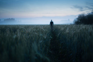 Path by MikkoLagerstedt