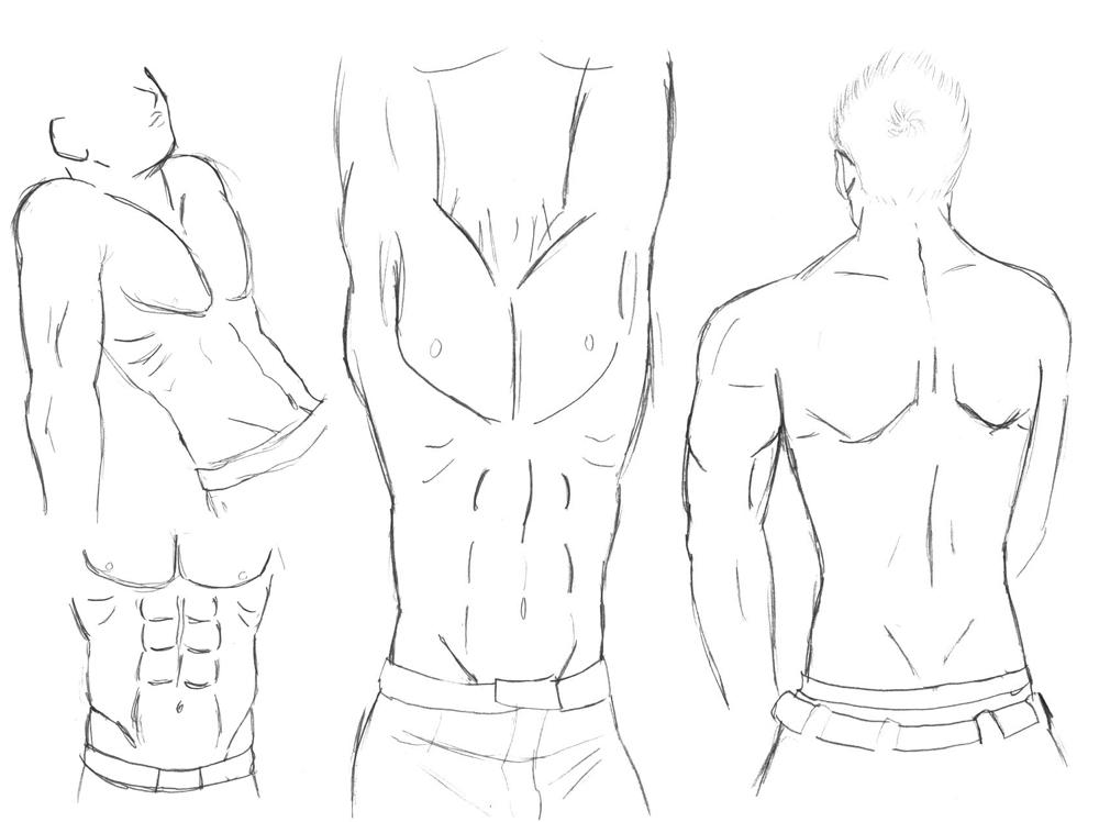 sketch-Male body study by HikaruRauchio