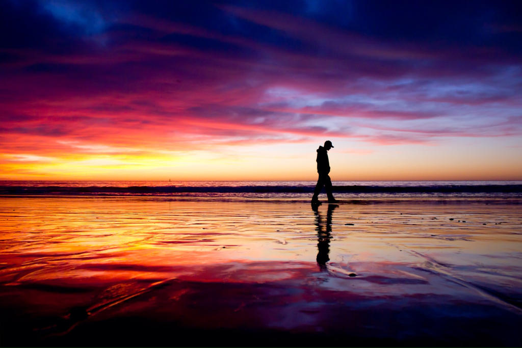 Image result for Beach Walk
