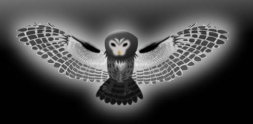 The Midnight Flight by Mishrito