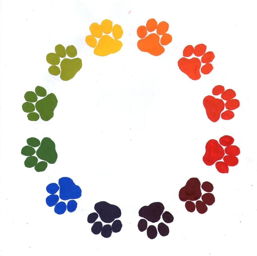 Paw Prints Color Wheel By Pawlove Arts