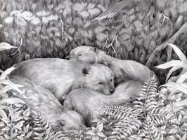 Snuggle Den by Pawlove-Arts