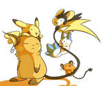 Big Brother Raichu
