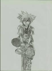 Sora Comission 1 by Hotaru-Mekanikaru