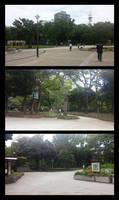 Yokohama - Park