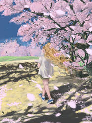 Walking Under Cherry Blossoms by Tujion
