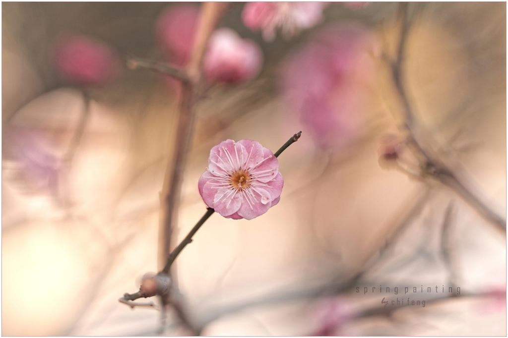 spring painting by ChiFeng-dA