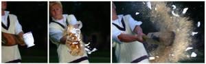 Tea and Cricket