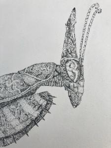 DrawingHedgehog53's Profile Picture