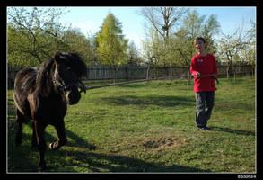 26 - Ponyraider by adamsik