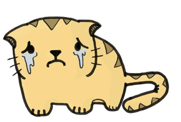 an unhappy little cat by sengoku24
