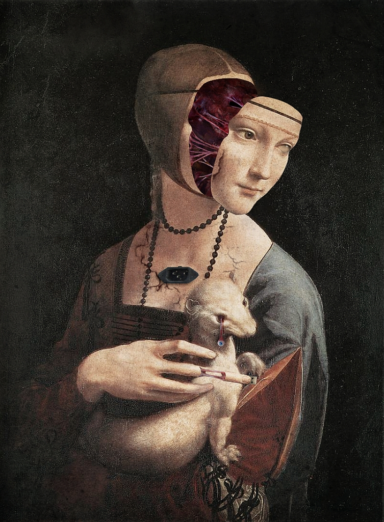 the lady with an ermine Define ermine: any of several weasels whose coats become white in winter usually with black on the tip of the tail especially : a weasel (mustela.