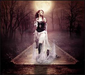 Moonlight Shadow by Darin69