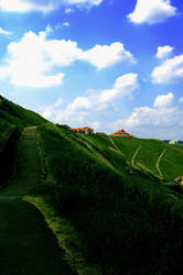 The Grass is Always Greener by BelkinCoop