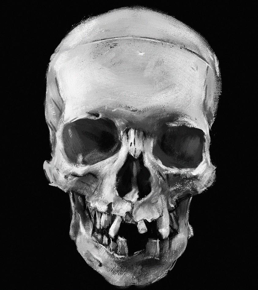Sketch # 25 by DobermannRU