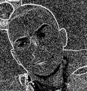 SylversVolpe's Profile Picture