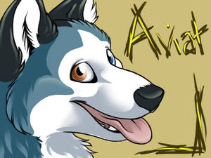 Conbadge - Aviat