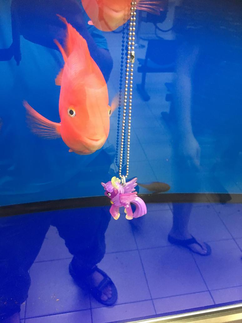 Twilight and Fishies 3 by Dynasty-Dawn