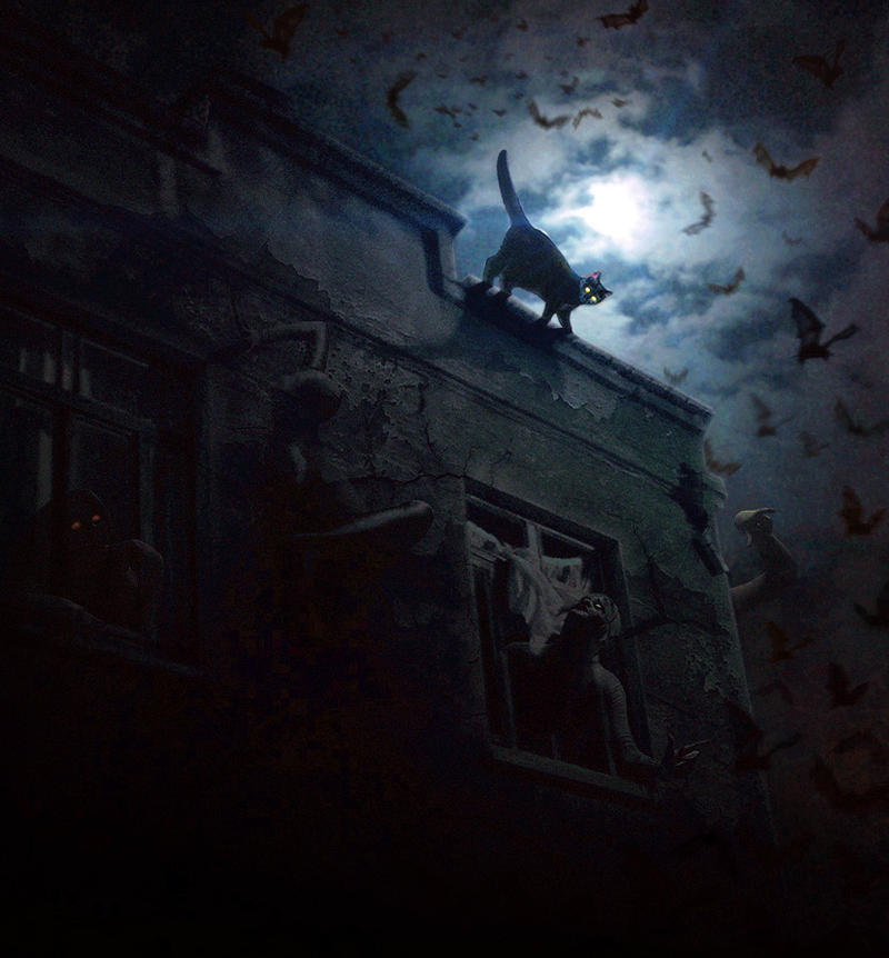 Cat on a Haunted Roof