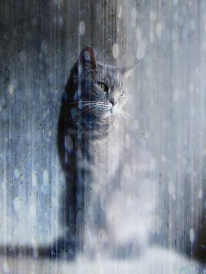 Introspective by Mr-Ripley