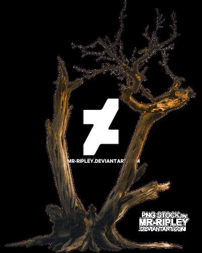 Tree 1 (STOCK) by Mr-Ripley
