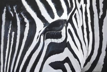 Zebra by Mclaramunt
