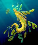 Mermay: Leafy Sea Dragon