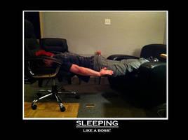 Sleeping like a... by JokenxD