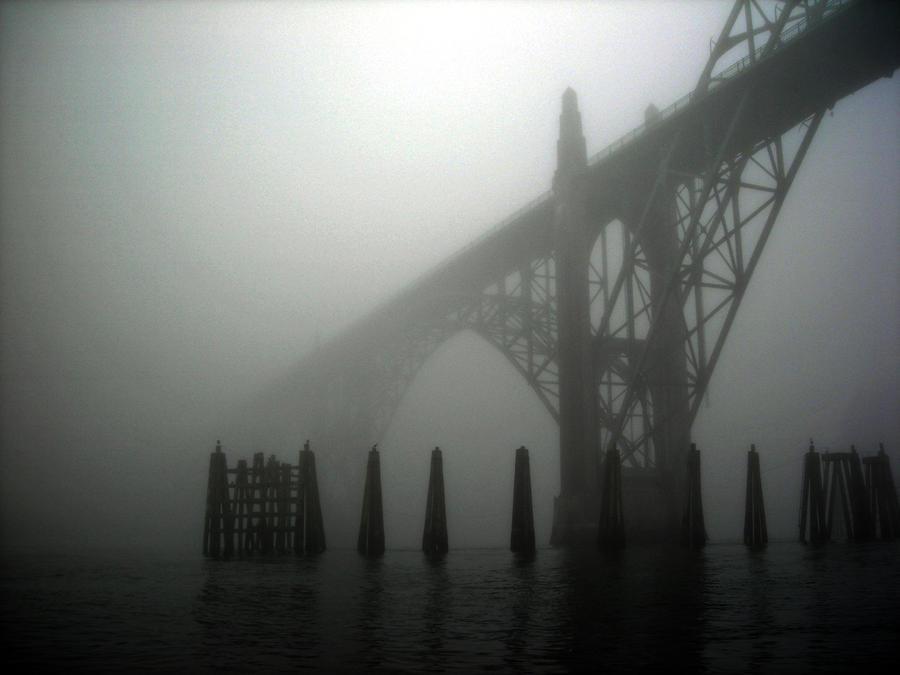 Foggy Mornings by PhotographyFace