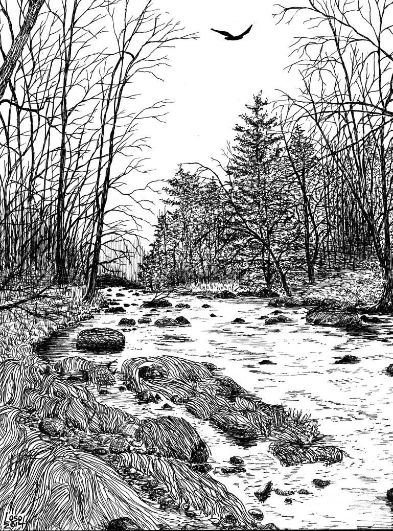 ...The River at Dawn... by UmaNHamU