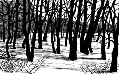 ...The Maple Grove... by UmaNHamU