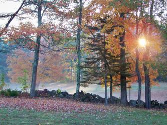 So dawns another golden day... by UmaNHamU