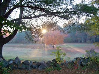 Morning Sunburst... by UmaNHamU