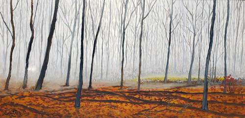 Approching Car in the Mist               12 x24