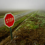 Stop For What?