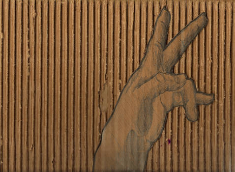 Hand Study/Cardboard Experiment Two