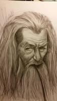 Gandalf the grey by Josephmarandax
