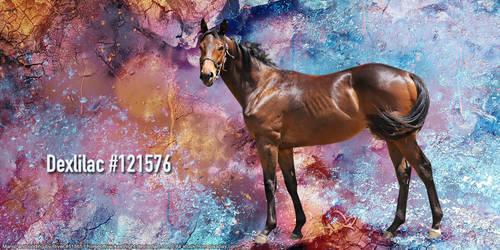 Dexlilac Layout Image by HorseOfBlackestNight