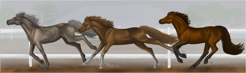 Misty Morning Race by HorseOfBlackestNight