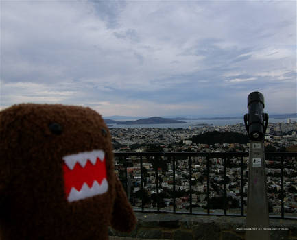 2009 San Francisco 082.
