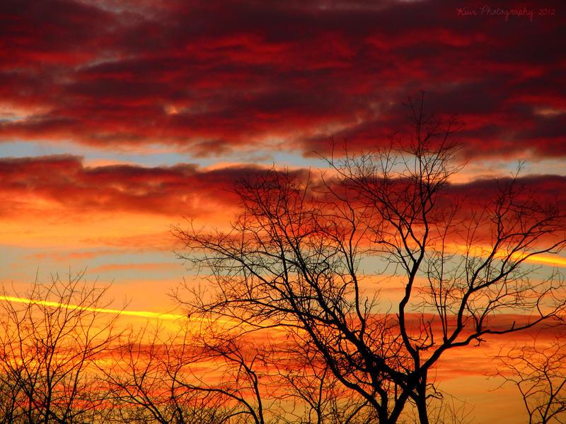 Prismatic Sunset by Kiwi-chu
