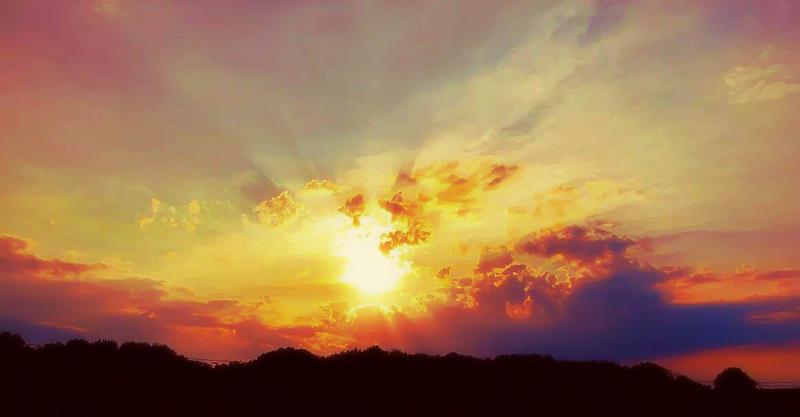 Evening Glory by Kiwi-chu