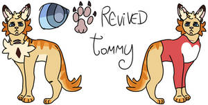 Dream smp as cats / Revived Tommy reference