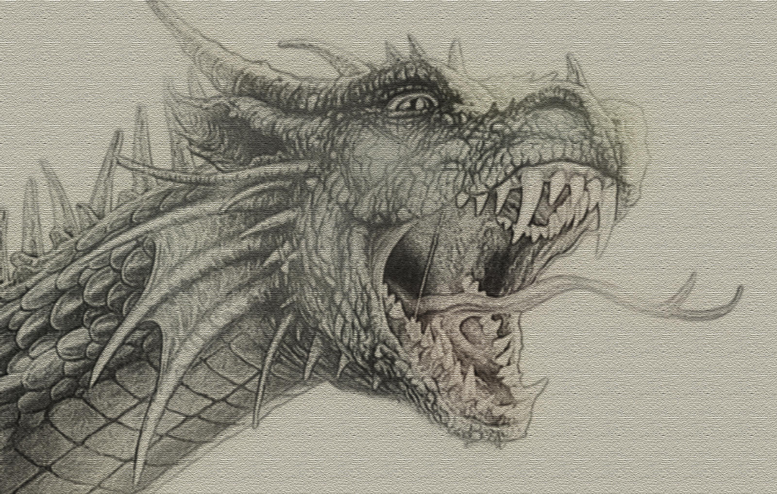 Detailed dragon sketch by zapdosify on deviantart for Cool detailed drawings