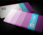Developer Business Card - 179