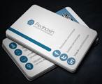 Developer Business Card - 207