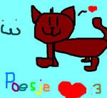 A kitty :3 poesje :meow: