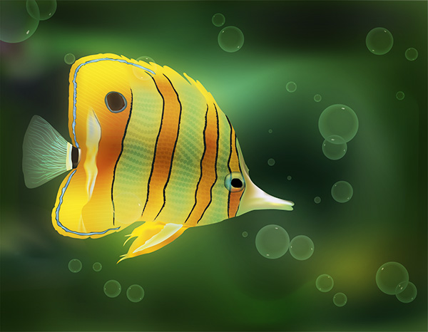 Fish Vector by DC-Junior