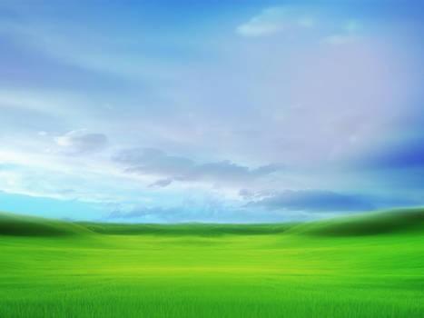 XP Bliss (2003)