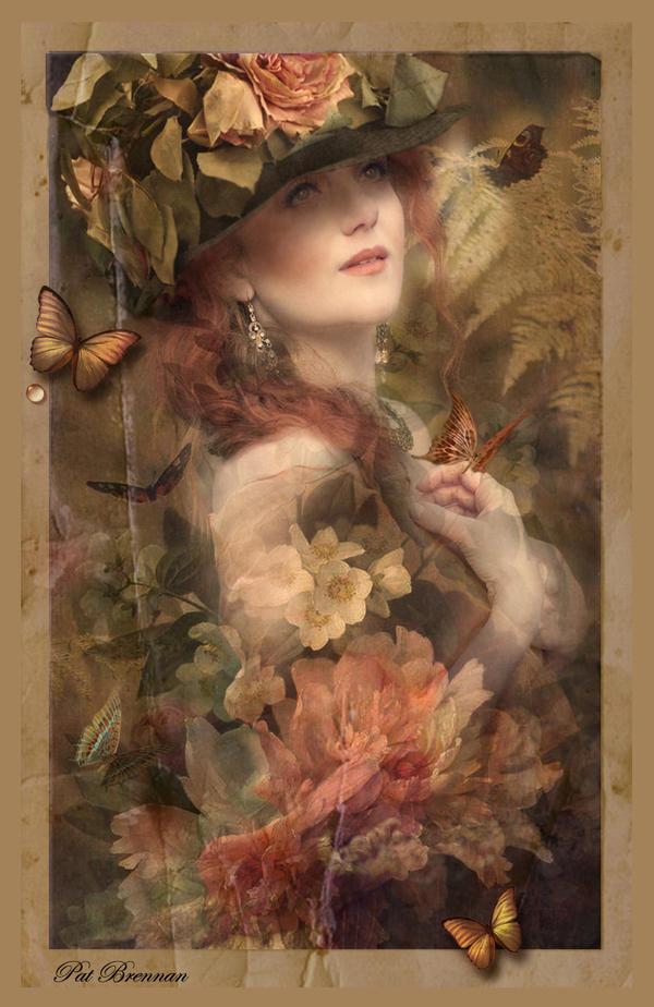 Butterfly Garden by patriciabrennan